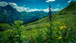 Berlandschaft , Blick vom Walmendinger Horn, Kleines Walsertal, Österreich