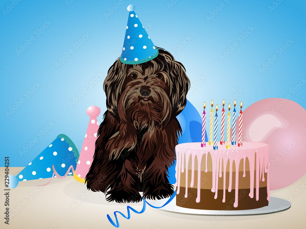 Happy Birthday Card With Funny Dog Cake Colorful Balloons Foto Poster Wandbilder Bei EuroPosters