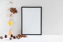 Autumn Composition. Photo Fram...