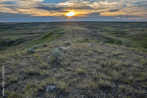Spoed Foto op Canvas Grijze traf. Sunset at Grasslands National Park in Saskatchewan Canada
