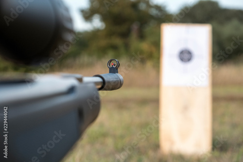 airgun and target