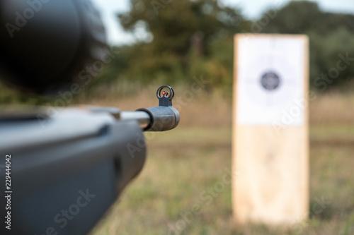 airgun and target