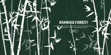 Bamboo Forest Set. Nature. Jap...