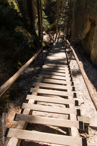 Tuinposter Trappen Wooden stairs with a woos rail between the rocks.