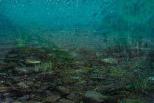 Boulders And Plants On Bottom Of Mountain Lake With Clean Water Close-up. Mountains Reflected On Smooth Water Surface. Background With Underwater Vegetation.