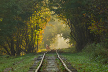 Autumn Is Coming. A Tunnel Of ...