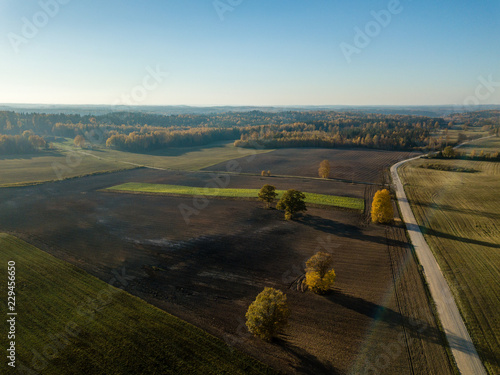 drone image. aerial view of rural area with gravel road in autumn colored fields and forests