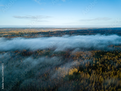 Tuinposter Pool drone image. aerial view of rural area with fields and forests covered in mist