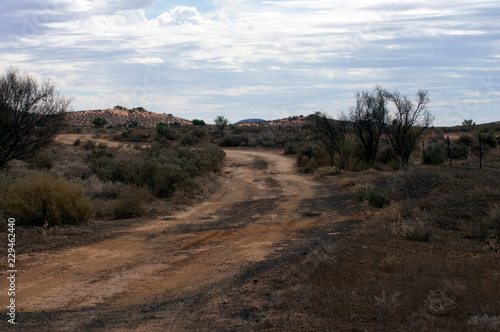 Εκτύπωση καμβά Track near Hookina ruins, The Outback Highway just north of Hawker, Flinders Ran