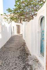 Fototapeta typical little street in santorini in greece in cyclades