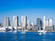 東京スカイツリーと湾岸エリアのタワーマンション