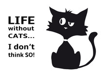 Cynical Cat With Quote Life Wi...
