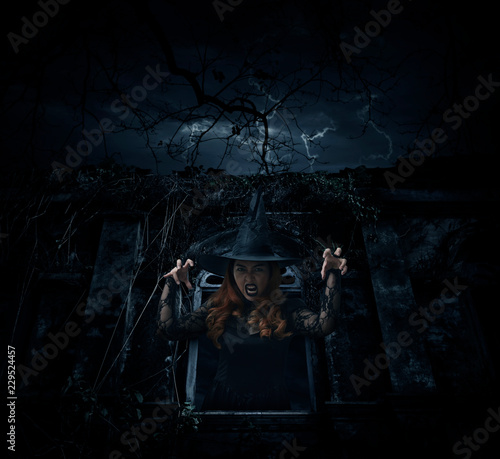 Wall Murals Cemetery Scary halloween witch standing over ancient window castle with dead tree and cloudy sky