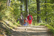Group Of People Walking By Hiking Trail In Forest