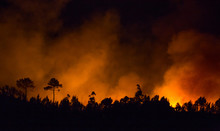Big Forest Fire During Night In Braga, Portugal.
