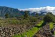 canvas print picture - La Palma Kanaren canarias canary islands travel reise holiday spain insel vulkan lava atlantik urlaub erholung relax grün grüne