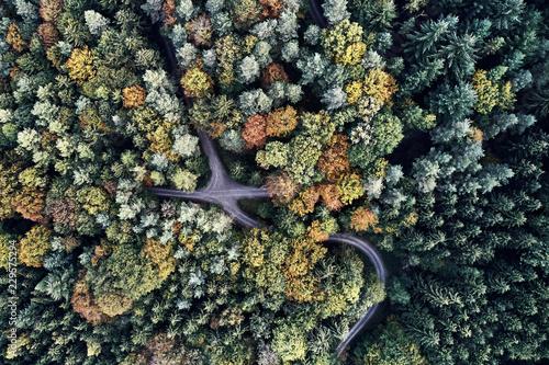 widok-z-lotu-ptaka-drone-jesien-las-z-gory-dji