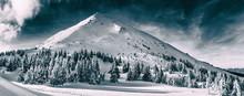 Beautiful Winter Landscape Of ...