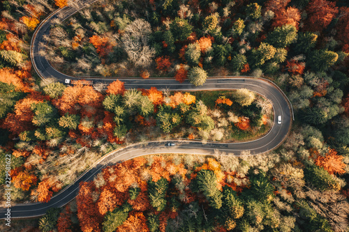 Fototapeta Winding mountain road trough the forest in the autumn with cars passing on the road obraz