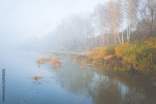 In de dag Rivier Morning on the calm river with forest on their bank