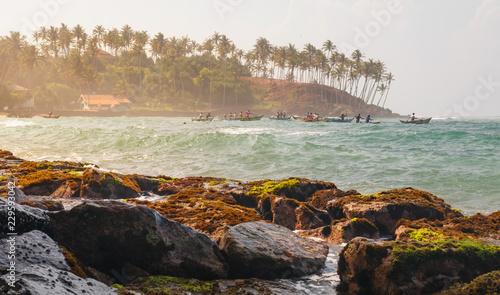 Fotografía  Coconut palm and sun lights through trees on beach with fishermen , Mirissa, Sri