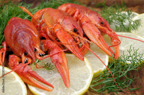 Poster Coquillage crayfish and lemons on a wooden table