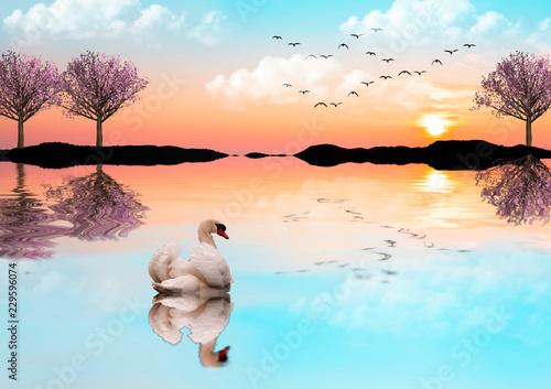 Fotografie, Obraz  cisne en el lago de los arboles rosa