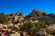 Beautiful views at Capitol reef national park