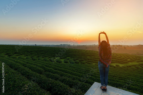 Carta da parati  Lifestyle traveler women happy feeling good relax and freedom facing on the natural tea farm in the sunrise morning, Thailand
