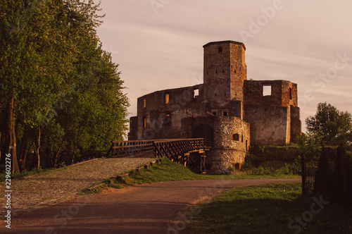 View to Castle of Bishops in Siewierz Wallpaper Mural