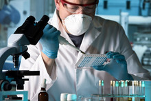 Biomedical Engineer Working With Samples In Microplate In The Laboratory / Scientist Working With Microplate In A Pharmaceutical Lab