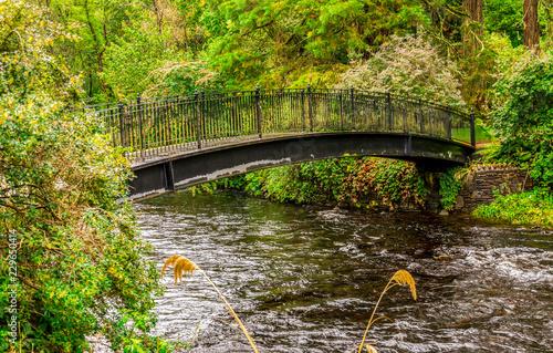 Keuken foto achterwand Bruggen A pedestrian visitor's bridge over river Eachaig in Benmore Botanic Garden, Scotland