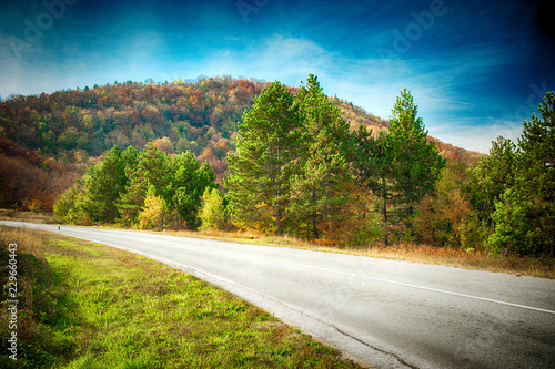 Landscape with beautiful road through the forest with colorful trees