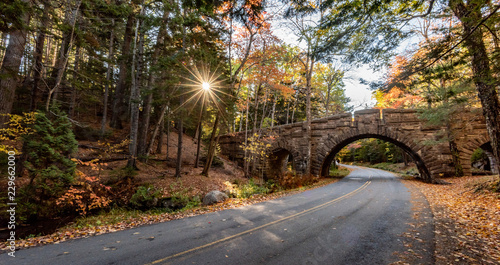Acadia National Park in Autumn Canvas Print