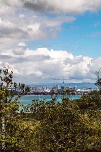 Fotobehang Landschap Landscape of Auckland city from Rangitoto Island, New Zealand.
