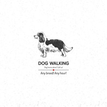 Background With King Charles Spaniel For Dog Walking Business