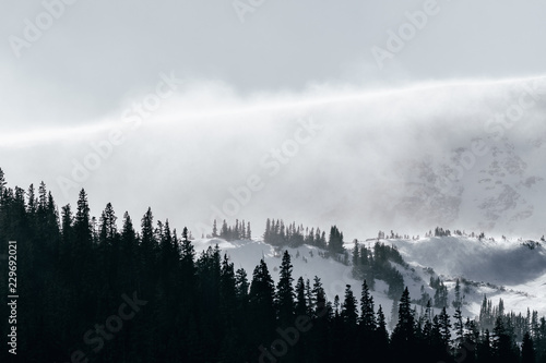 Poster Morning with fog Extreme storm blows snow over North Star Mountain in Park County, Rocky Mountains, Colorado