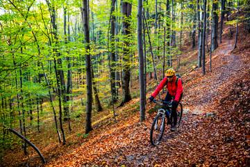 Fototapeta Cycling, mountain bikeing woman on cycle trail in autumn forest. Mountain biking in autumn landscape forest. Woman cycling MTB flow uphill trail.