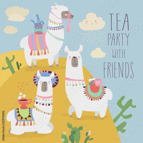 Cute friends mexican white alpaca llamas drinking tea