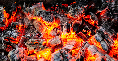 Fotografiet  Burning coals of wood as a background