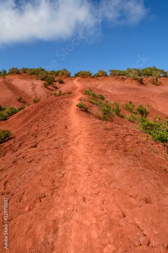 Spoed Foto op Canvas Baksteen Czerwony, pustynny, górzysty krajobraz La Gomera