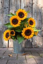 A Beautiful Sunflower Bouquet ...