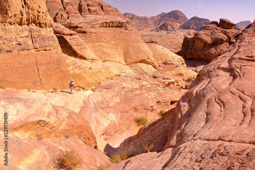 Tuinposter Midden Oosten The colorful Wadi Rum desert in Jordan, Middle-East, with colorful mountains