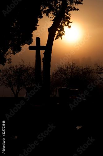 Foto op Canvas Begraafplaats soleil et ombre dans un cimetière