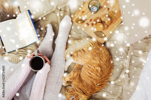 pets, hygge and winter concept - woman with coffee, book, cookies and red tabby cat sleeping on blanket at home over snow