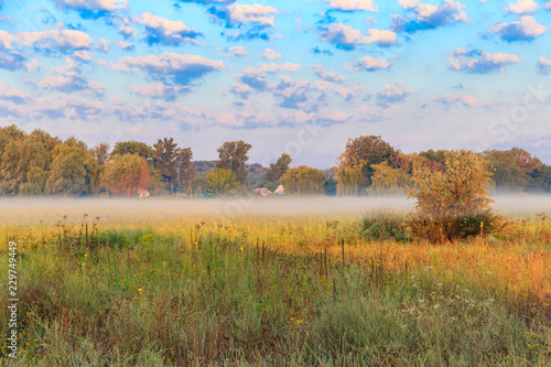 Summer landscape with green misty meadow, trees and sky. Fog on the grassland