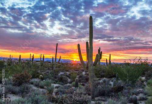 Brilliant AZ Desert sunset with Saguaro cactus in background