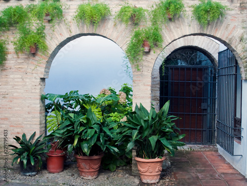 Fototapeten Schmale Gasse Courtyard with pots, with a glass door and another behind bars