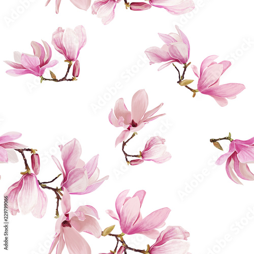 Seamless magnolia flower pattern illustration. isolated on white background