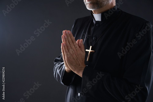 Obraz na plátně Praying hands priest portrait of male